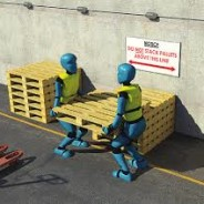 Manual Handling Course for Drivers